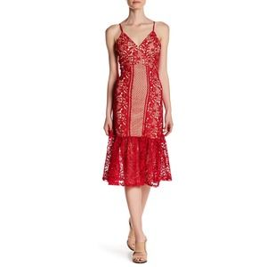 Romeo Juliet Couture V-Neck Lace Fit & Flare Dress